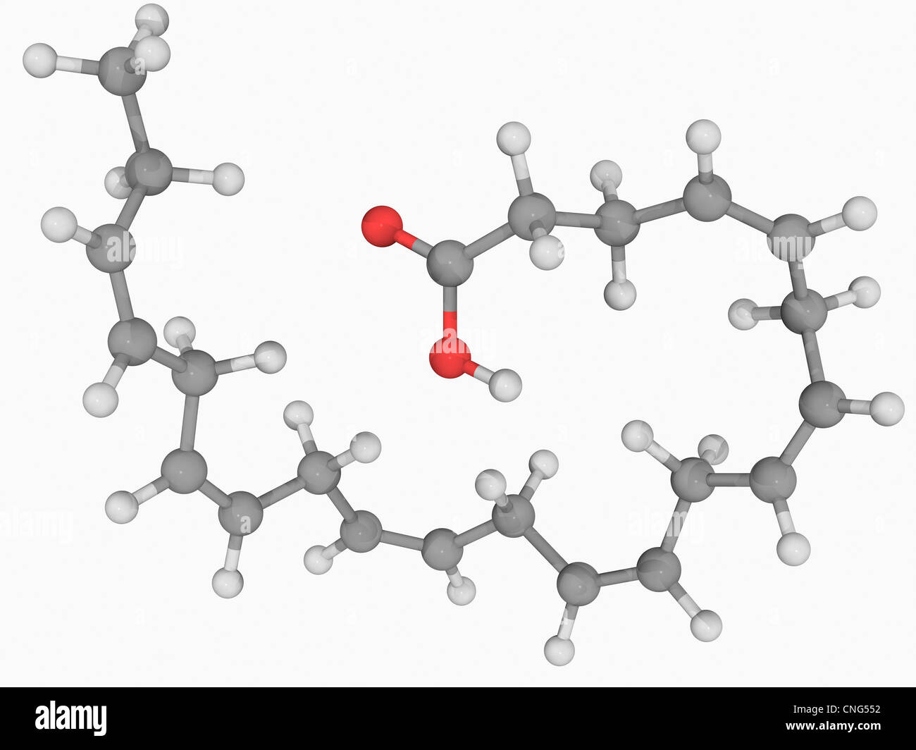 Docosahexaeonic acid molecule - Stock Image