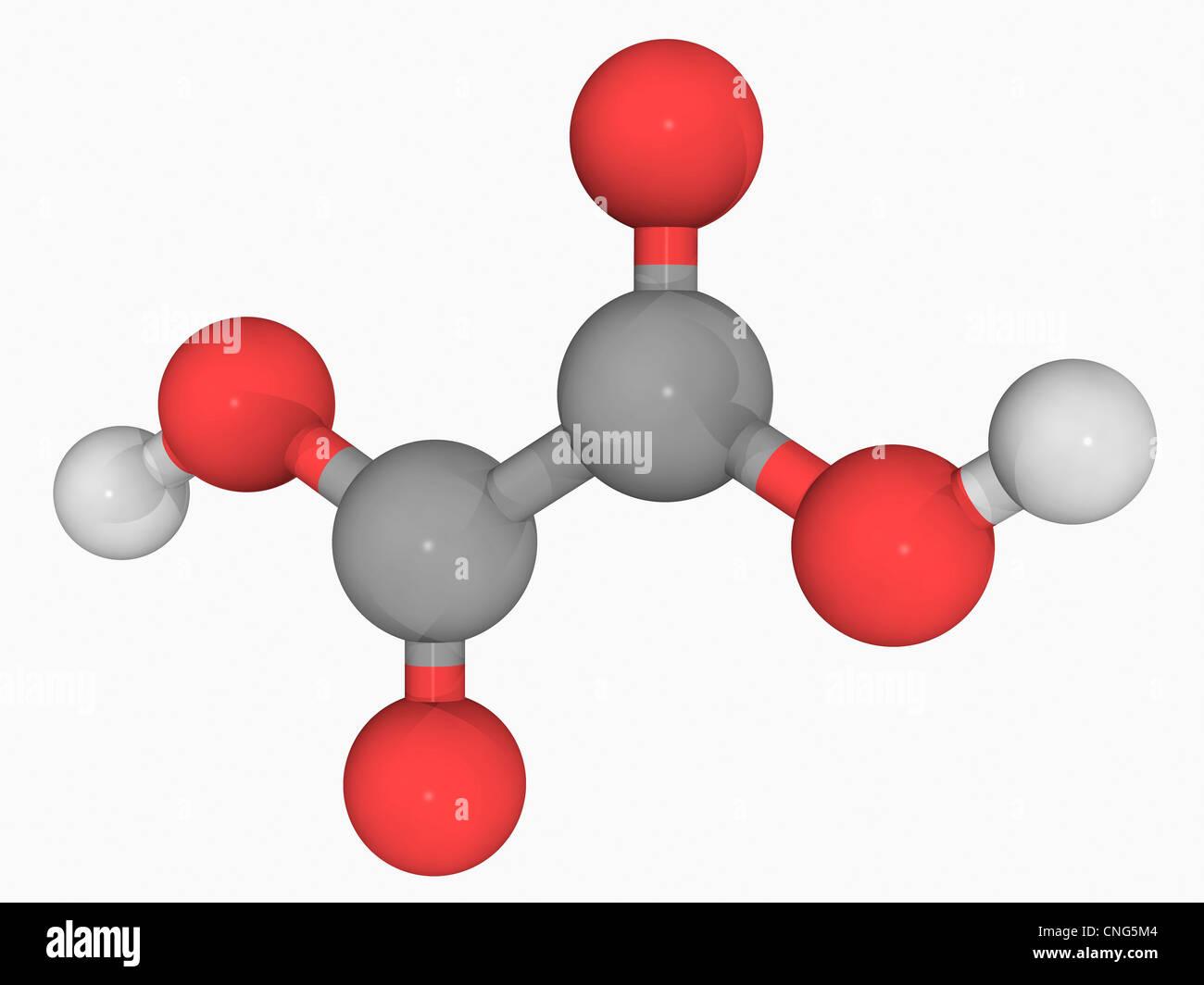 Oxalic acid molecule - Stock Image