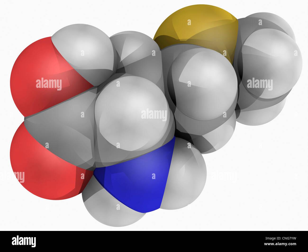 Methionine molecule - Stock Image