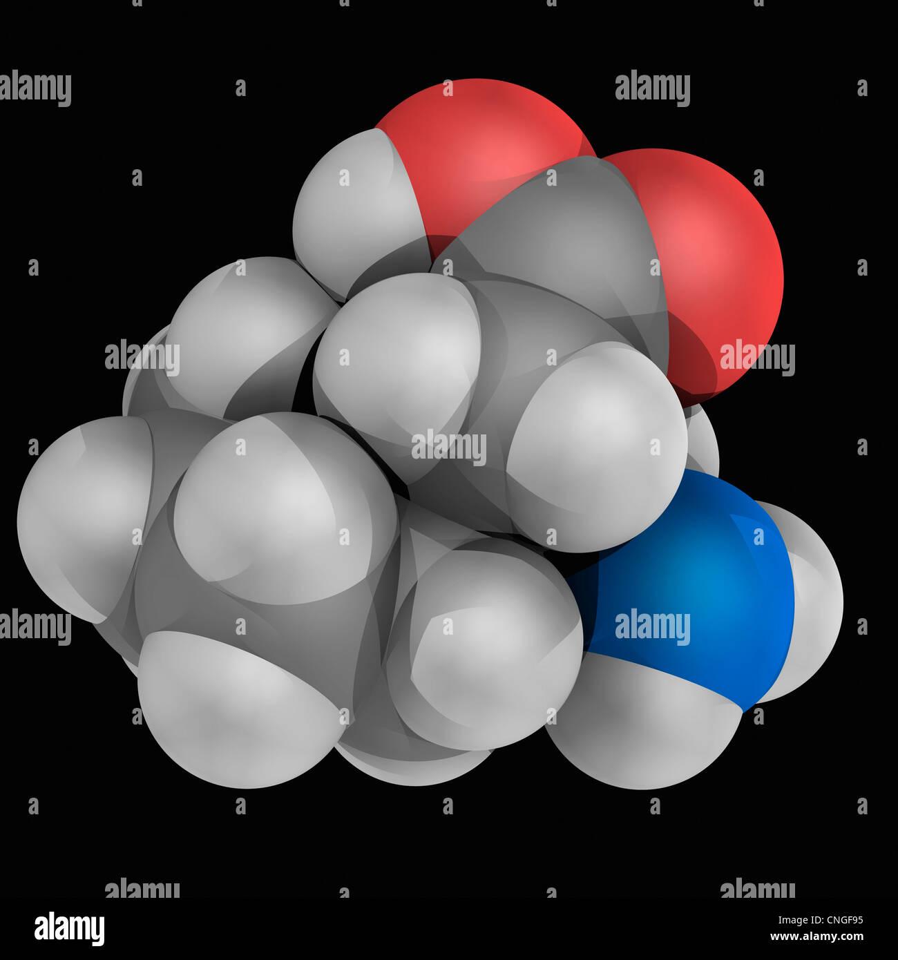Gabapentin drug molecule - Stock Image
