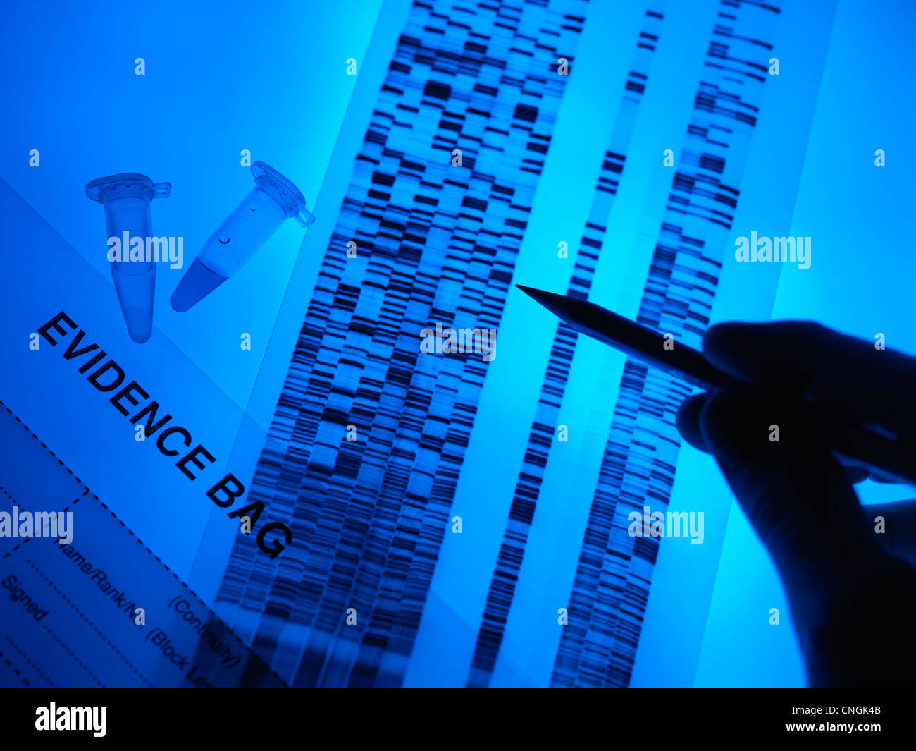 Forensic evidence - Stock Image