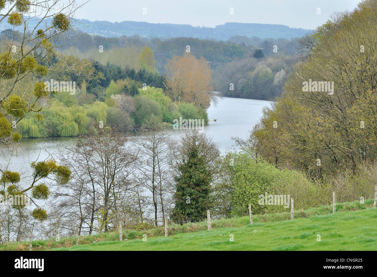 "River lined with trees : ""La Mayenne"", in spring (La Haie Traversaine, Mayenne department, Loire country, France). Stock Photo"