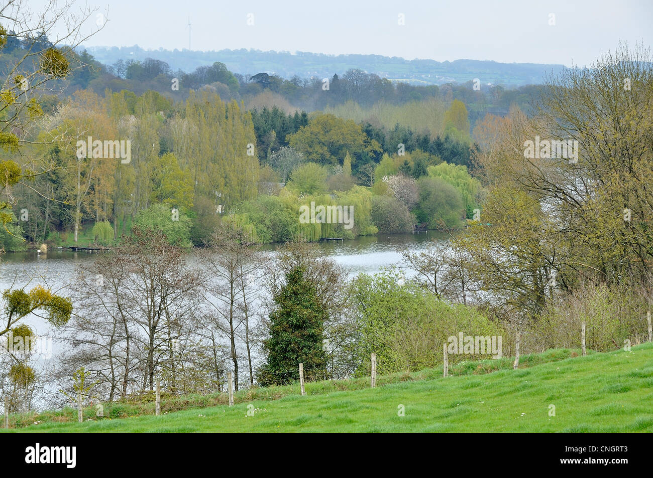 """River lined with trees : """"La Mayenne"""", in spring (La Haie Traversaine, Mayenne department, Loire country, France). Stock Photo"""