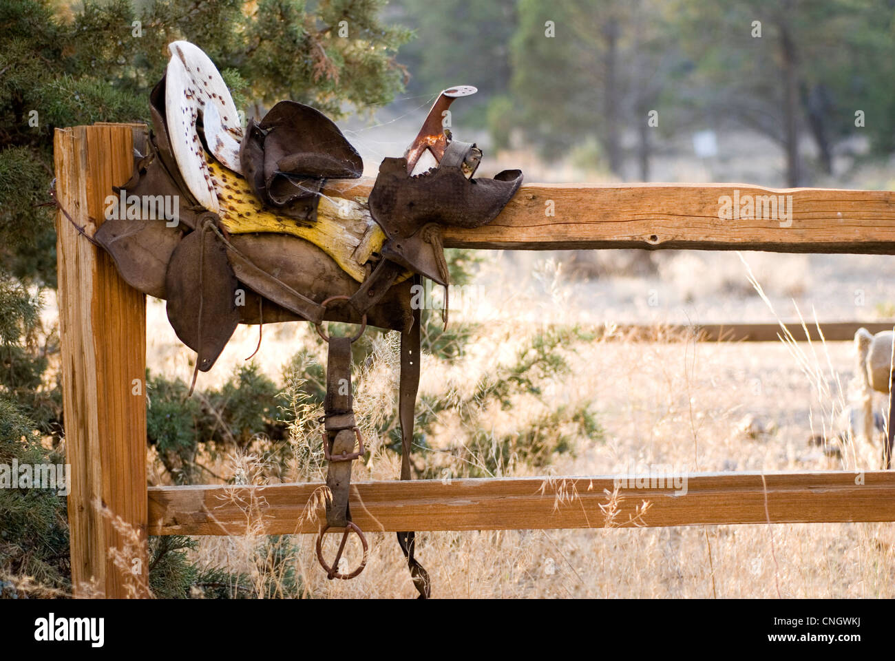 A weathered antique saddle on a split rail fence in the rural countryside. Room for copy. - Stock Image