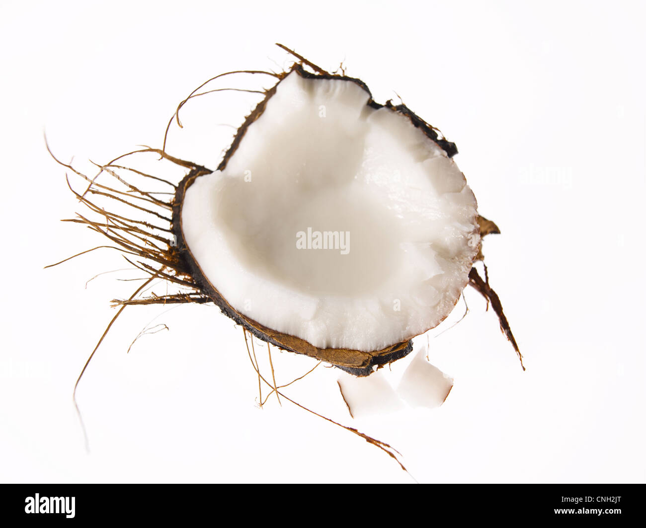 fresh coconut half with shell and husk and 2 pieces - Stock Image
