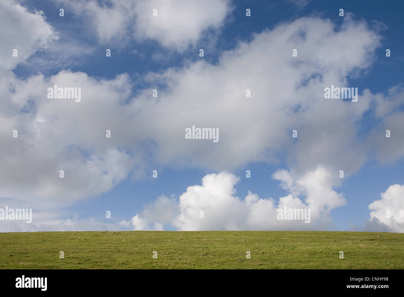 Green grass and clouds in blue sky - Stock Image