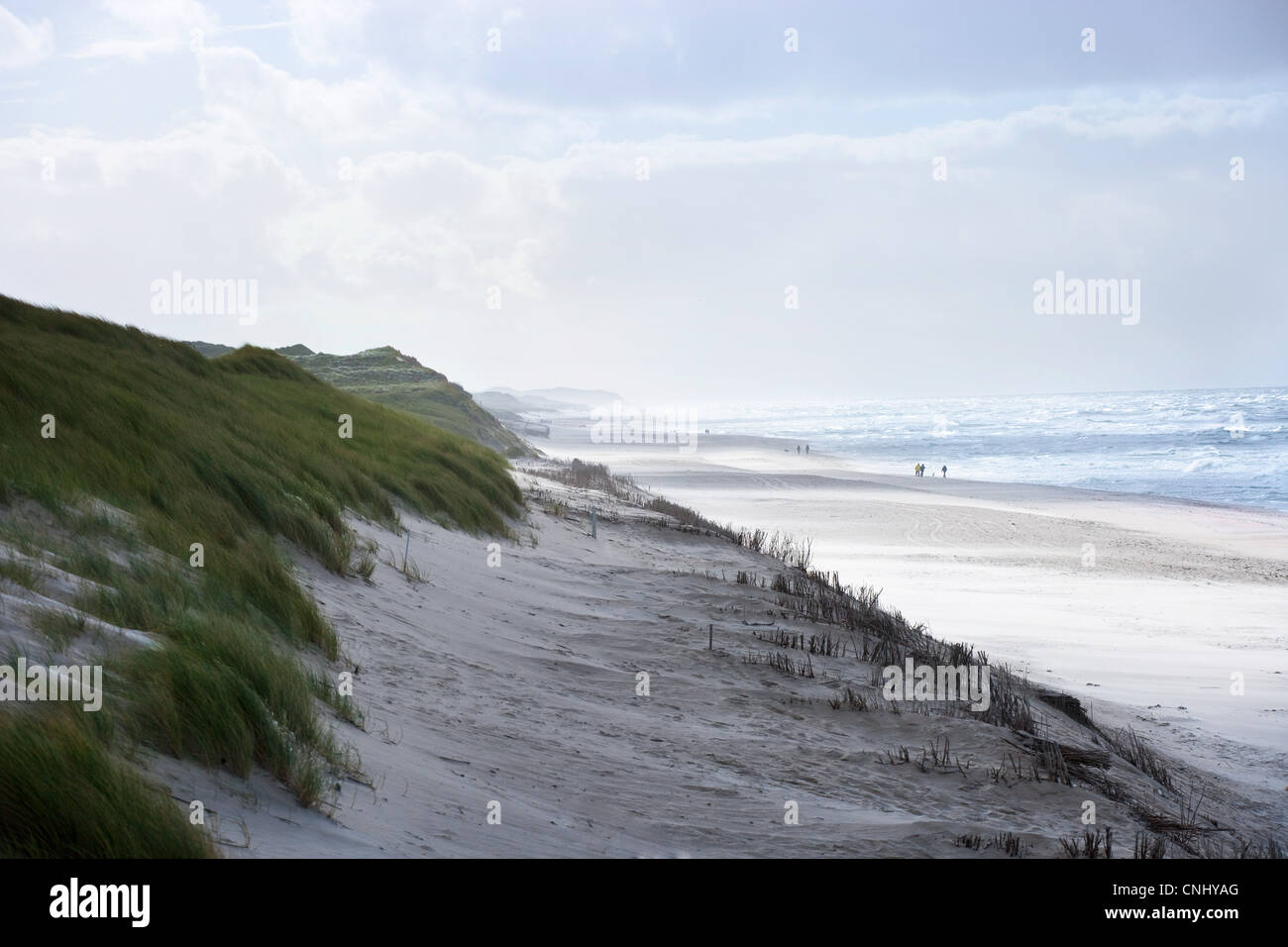 Sand dunes and beach of Sylt, Schleswig-Holstein, Germany - Stock Image