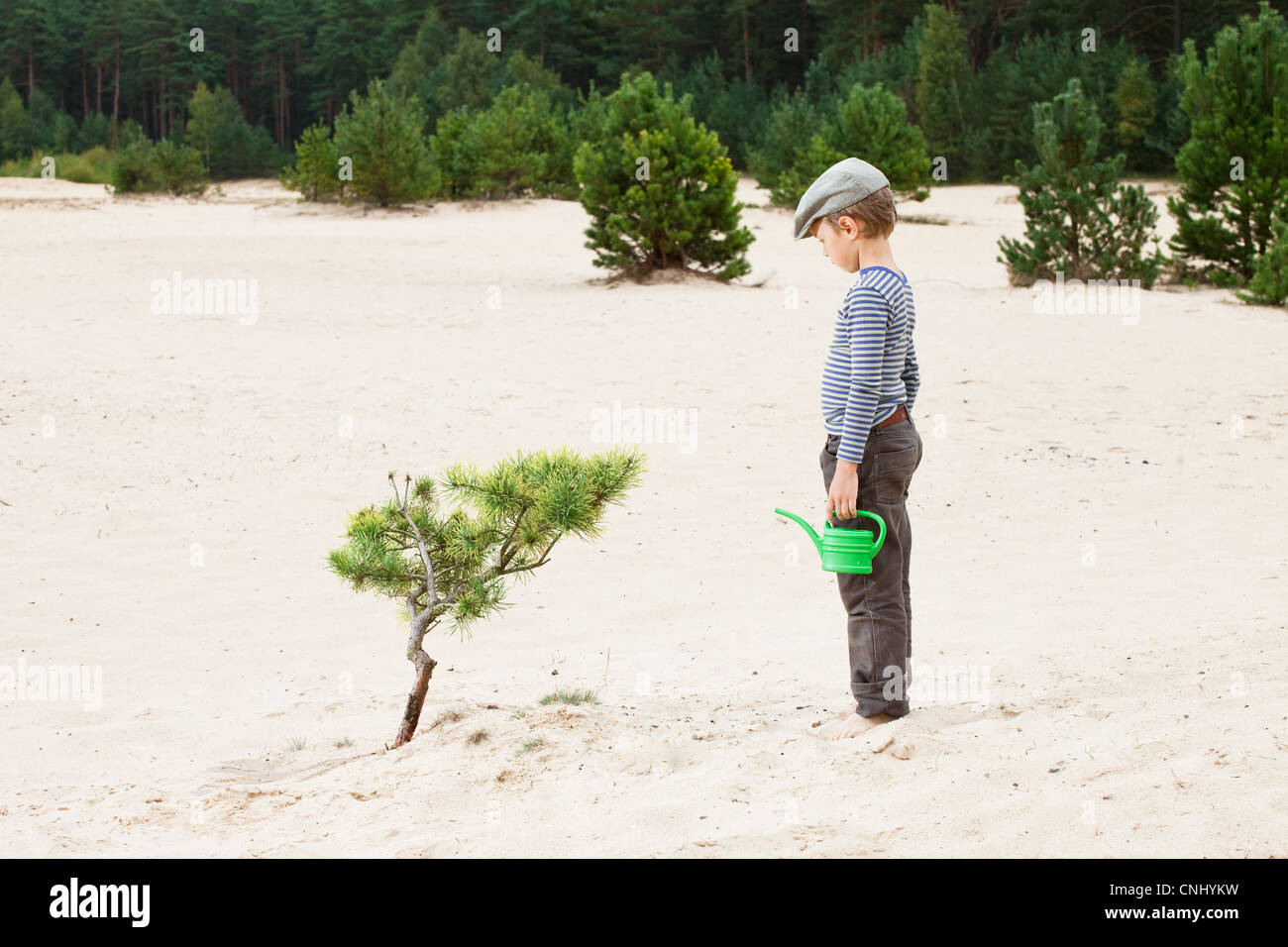 Boy with watering can, looking at plant in sand - Stock Image