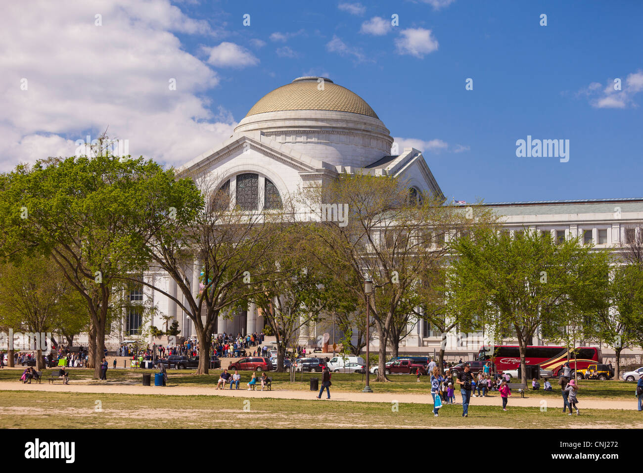 WASHINGTON, DC, USA - Smithsonian Museum of Natural History. - Stock Image