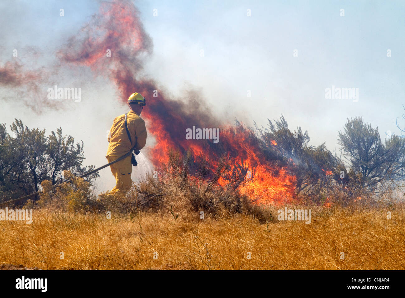 Wildfire south of the city of Boise, Idaho, USA. - Stock Image