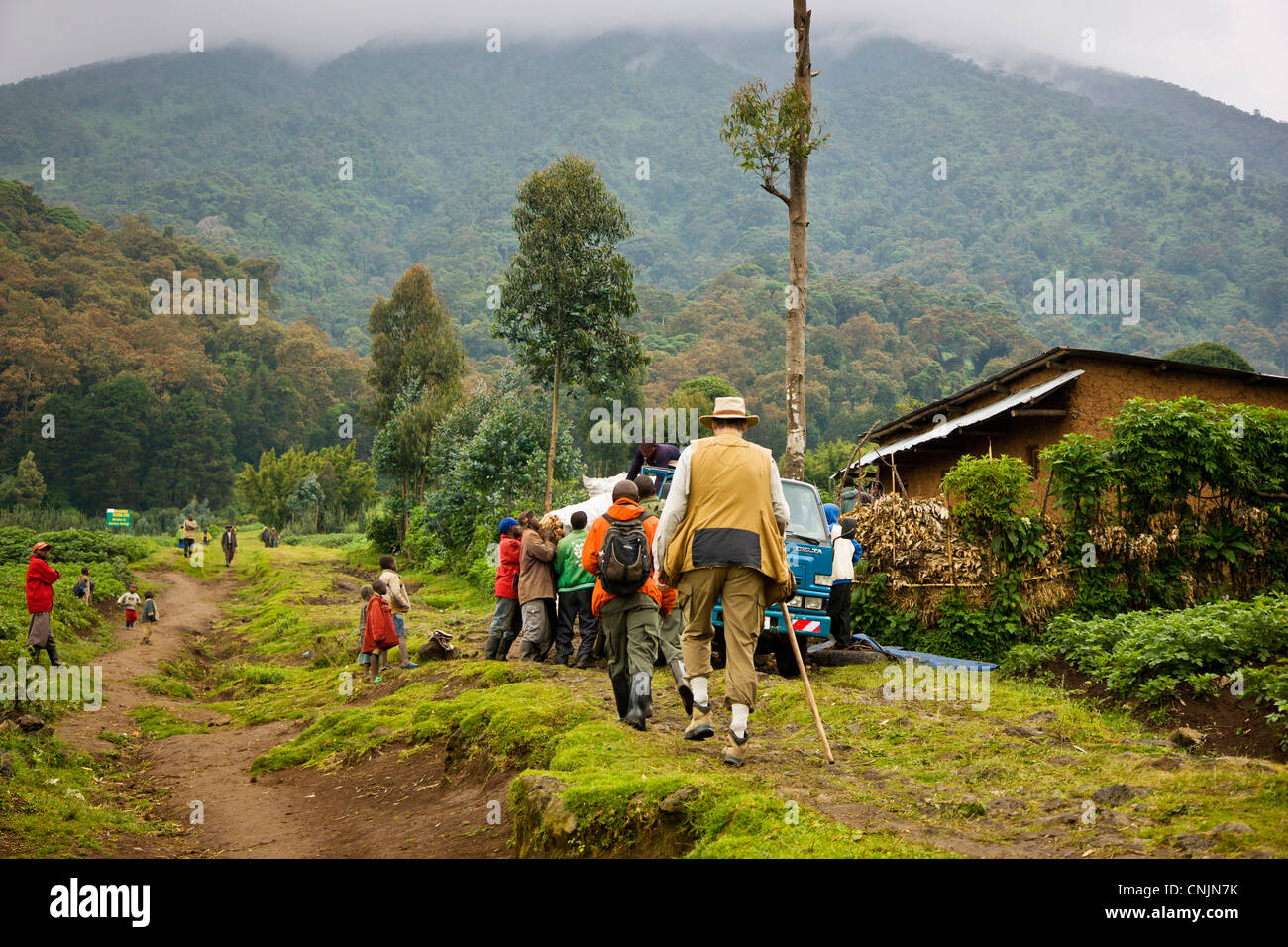 Africa, Rwanda, Gorilla Trekkers walk through potato fields near the Buffalo Wall. - Stock Image