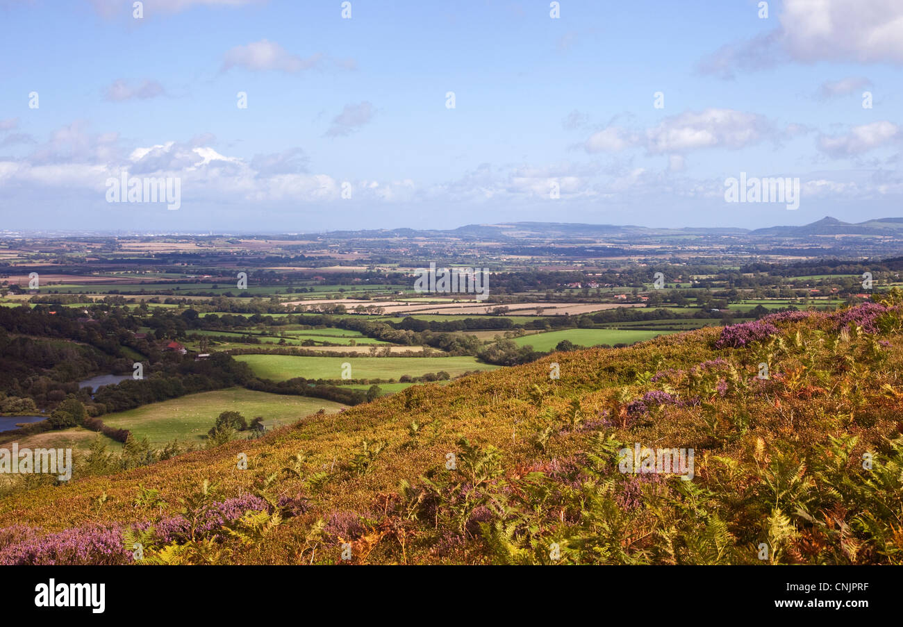 Teeside from the North York Moors - Stock Image