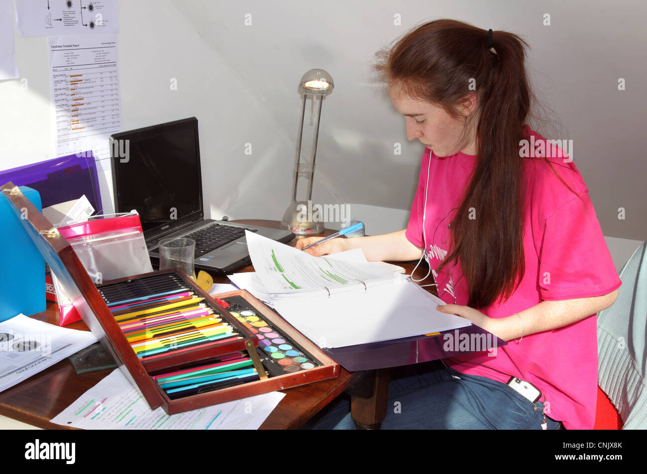 Student revising for exams. - Stock Image
