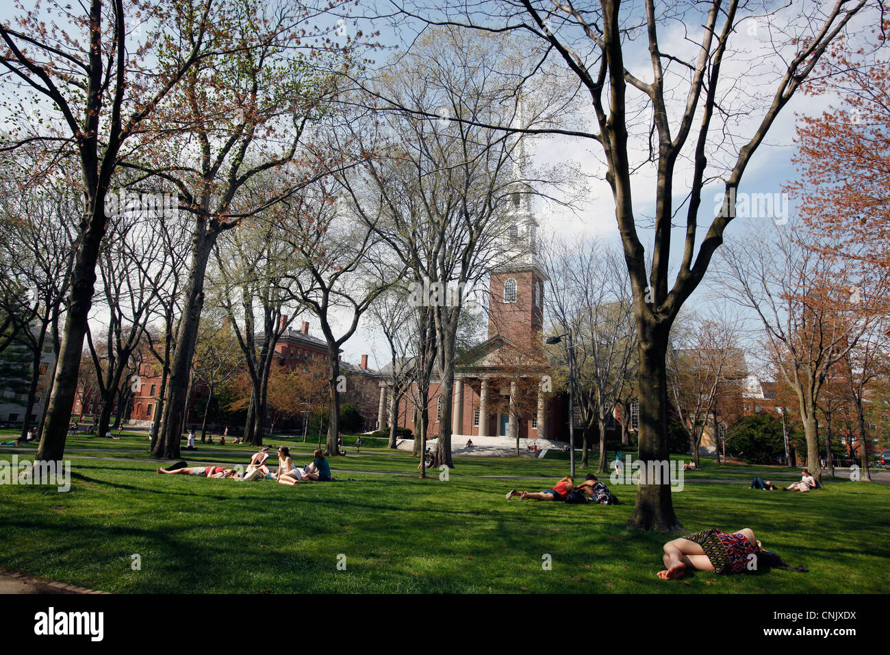 Harvard University, Harvard Yard, Memorial Church - Stock Image