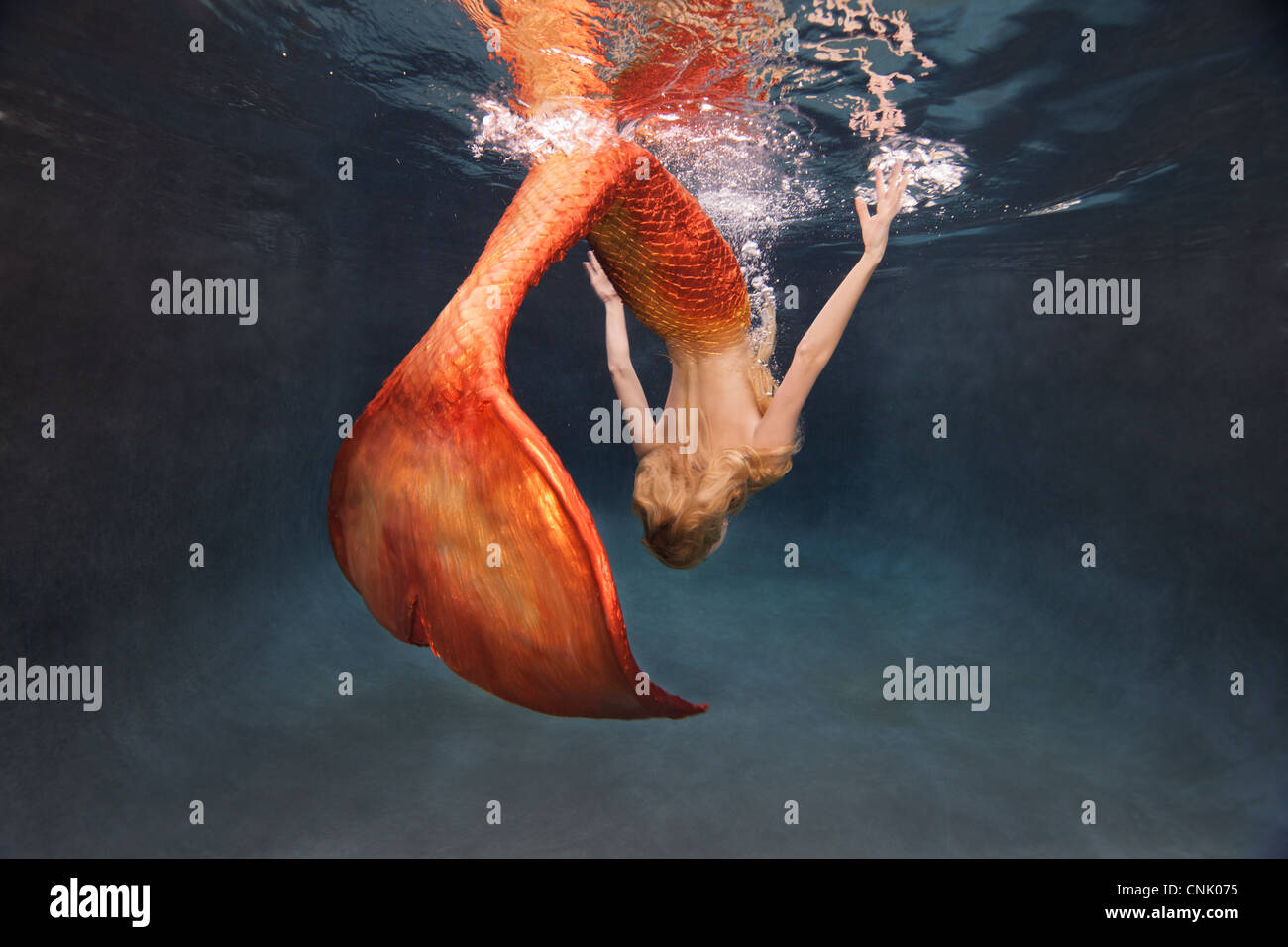 Mermaid doing an underwater flip at the water's surface - Stock Image