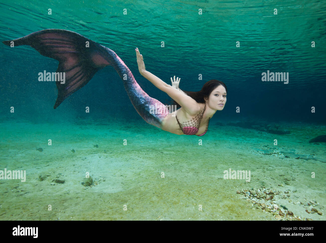 Young mermaid swimming underwater in the Rainbow River in Florida Stock Photo