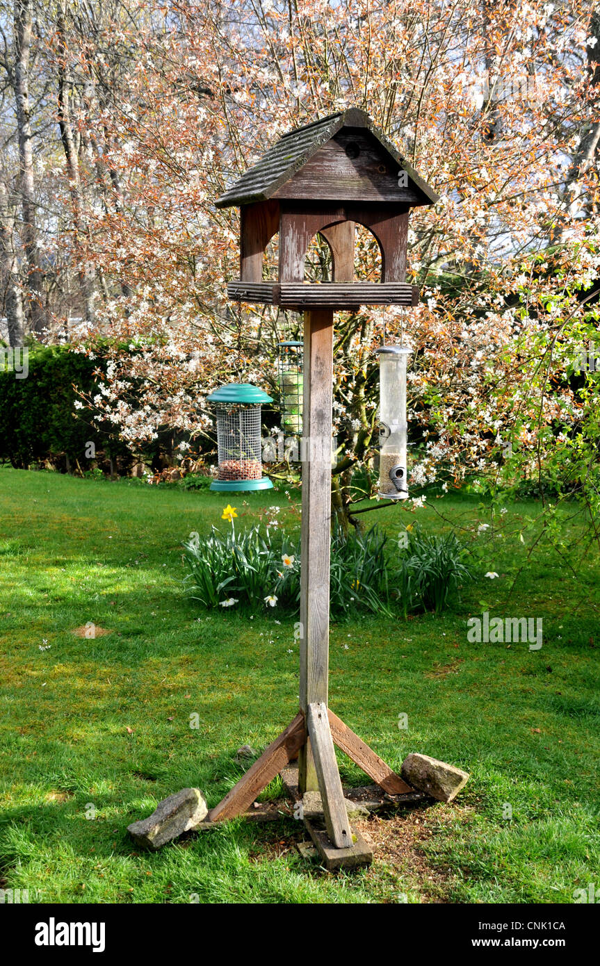 A wooden  birdhouse with hanging bird feeders in a spring garden with blossom trees. - Stock Image