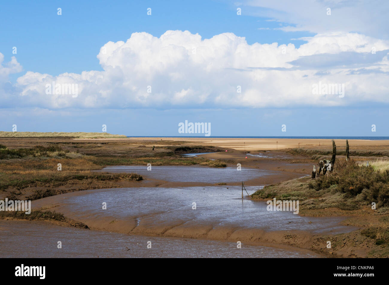 Saltmarshes at Thornham Harbour, Norfolk, England, UK Stock Photo