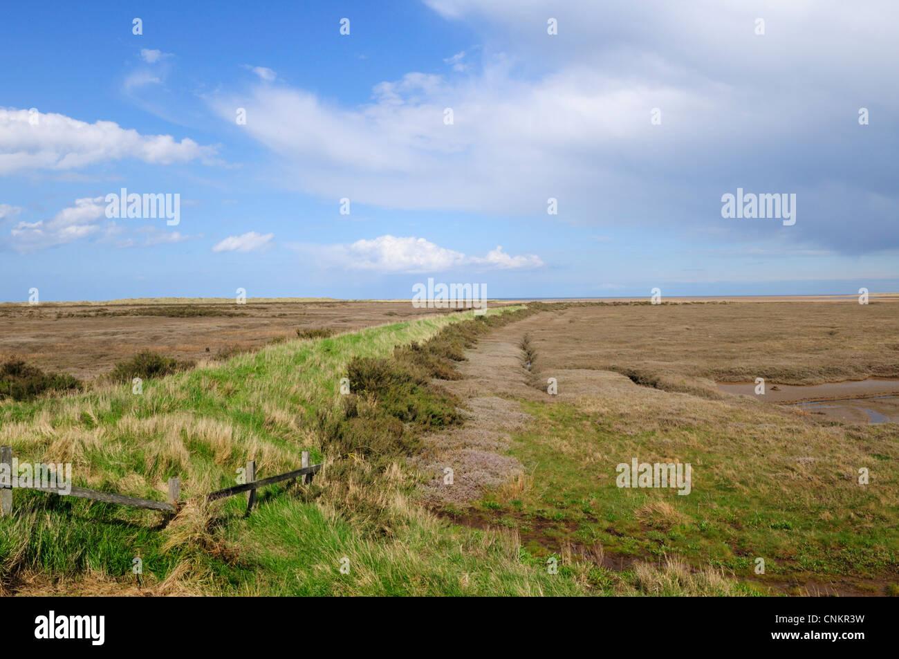 Saltmarshes near Thornham, Norfolk, England, UK Stock Photo