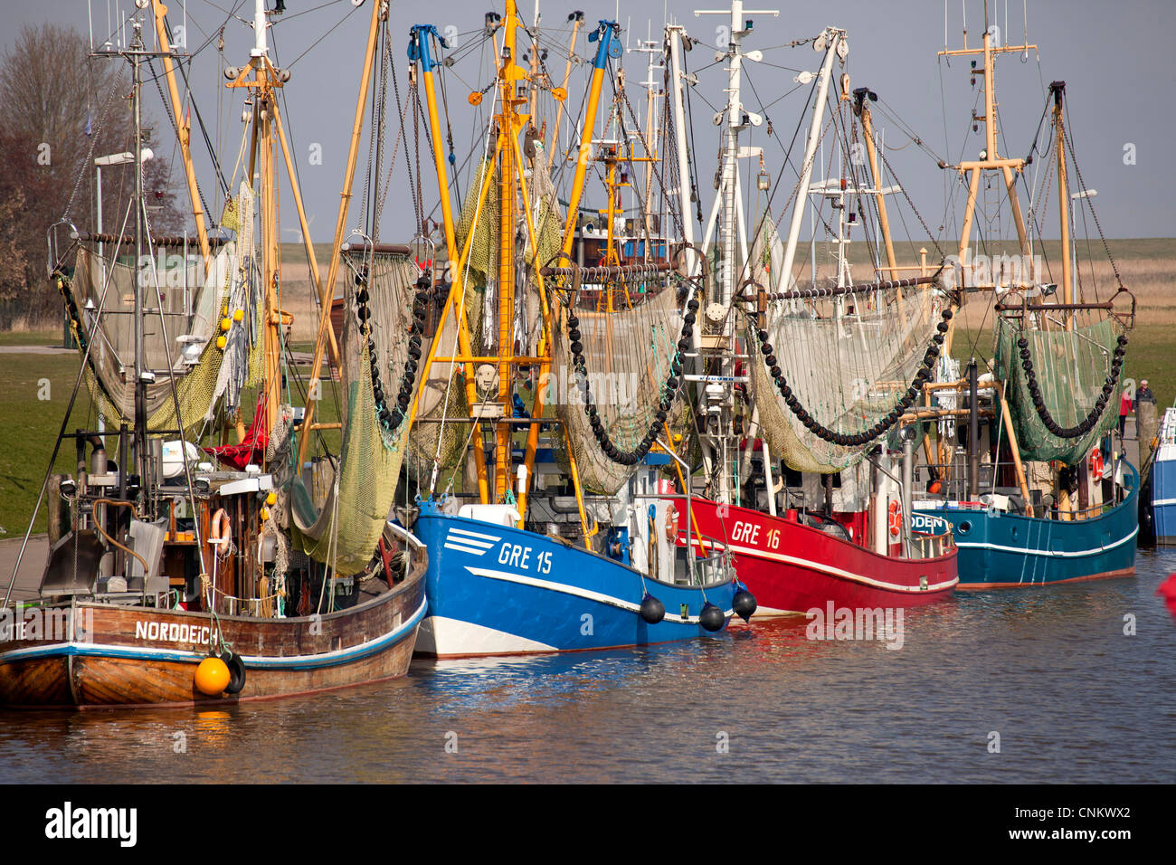 Shrimp cutters in the harbour of Greetsiel, East Frisia, Lower Saxony, Germany - Stock Image