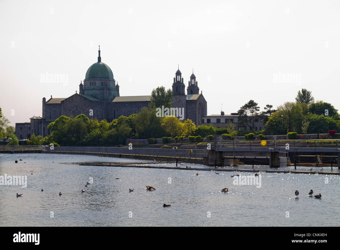 A view of Galway Cathedral from across he river corrib, Galway Ireland - Stock Image