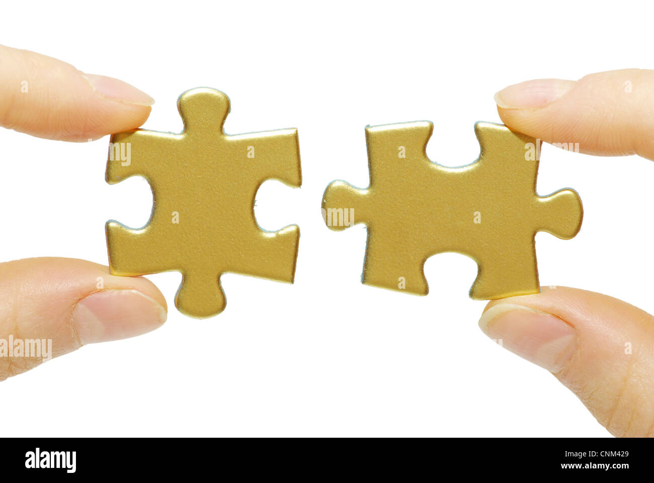 puzzle in hands isolated on white background - Stock Image