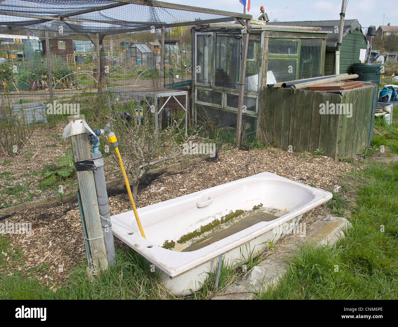 Water conservation during drought water shortage period. Old baths used for water storage at allotment. - Stock Image