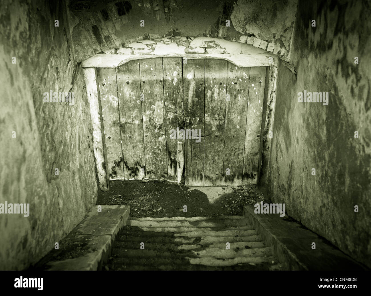 Creepy looking grunge basement door with stairs - Stock Image