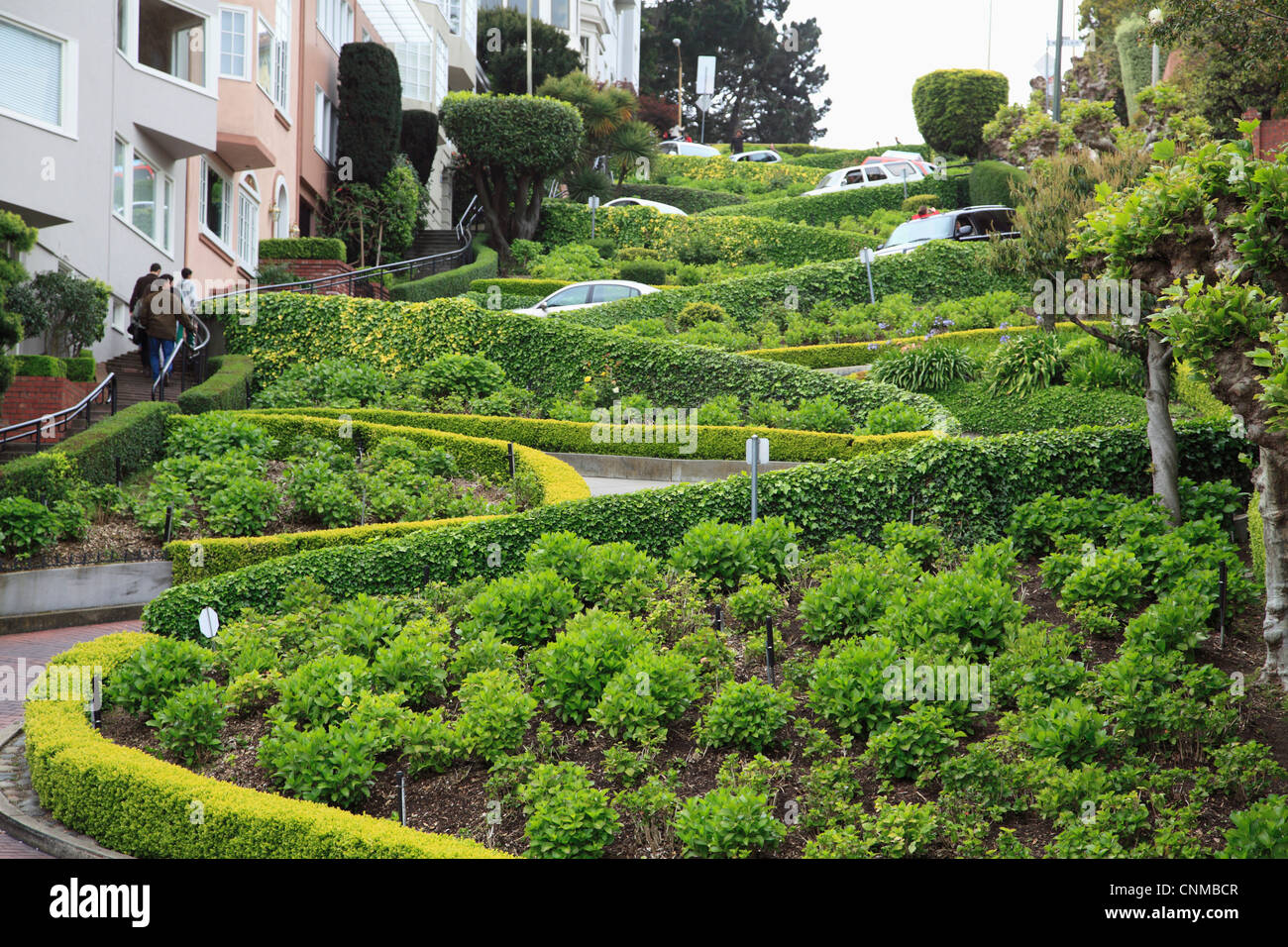Lombard Street, San Francisco, California, United States of America, North America - Stock Image