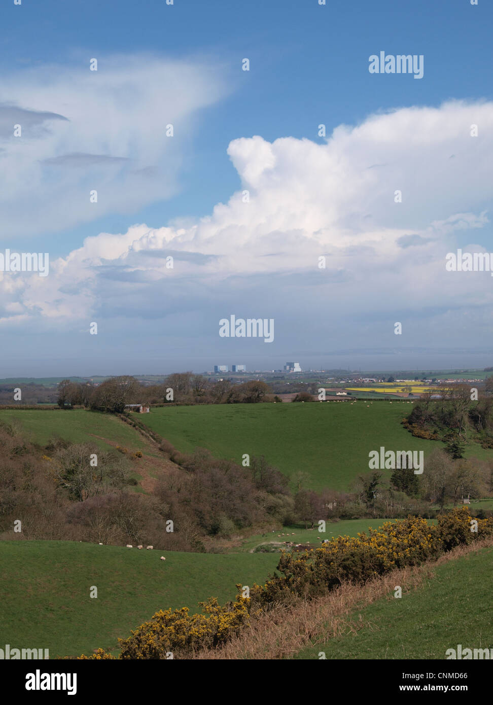 Hinkley  Point  Nuclear Power Station. Somerset. UK - Stock Image