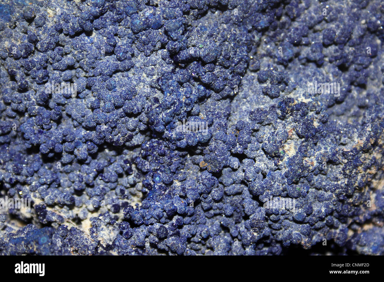 Azurite a.k.a. chessylite - a carbonate with the chemical formula Cu3(CO3)2(OH)2 - Stock Image