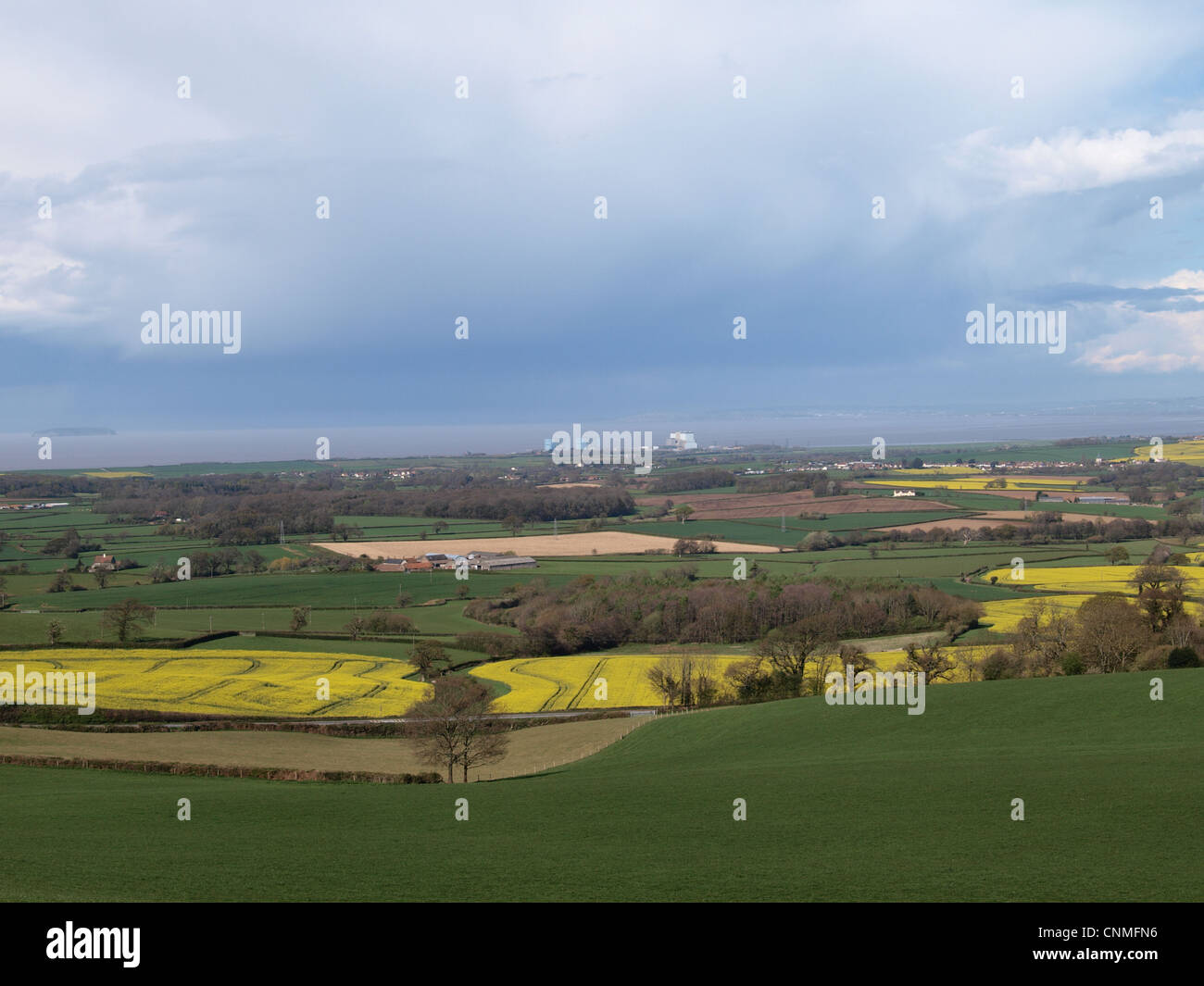Hinkley  Point  Nuclear Power Station viewed across fields. Somerset. UK - Stock Image