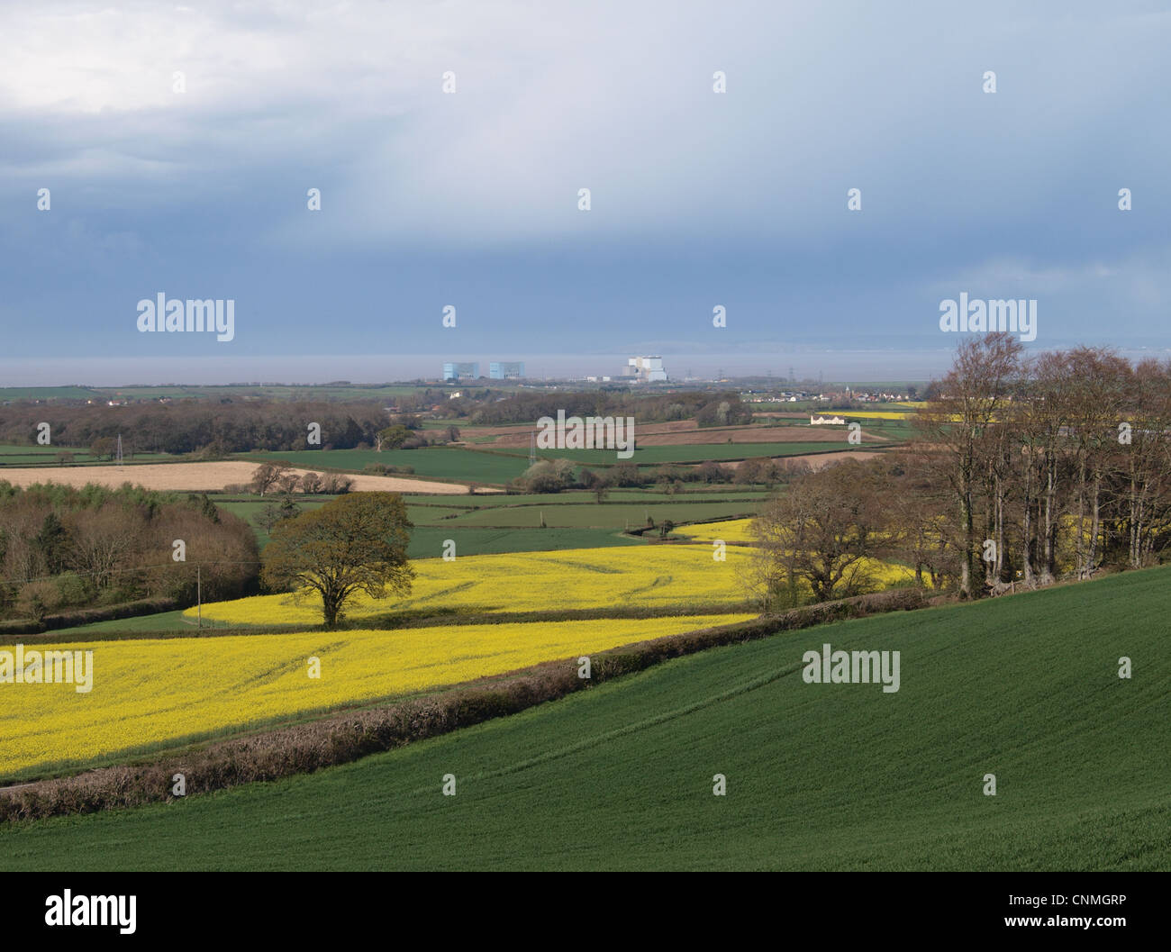 Hinkley  Point  Nuclear Power Station viewed across farmland. Somerset. UK - Stock Image