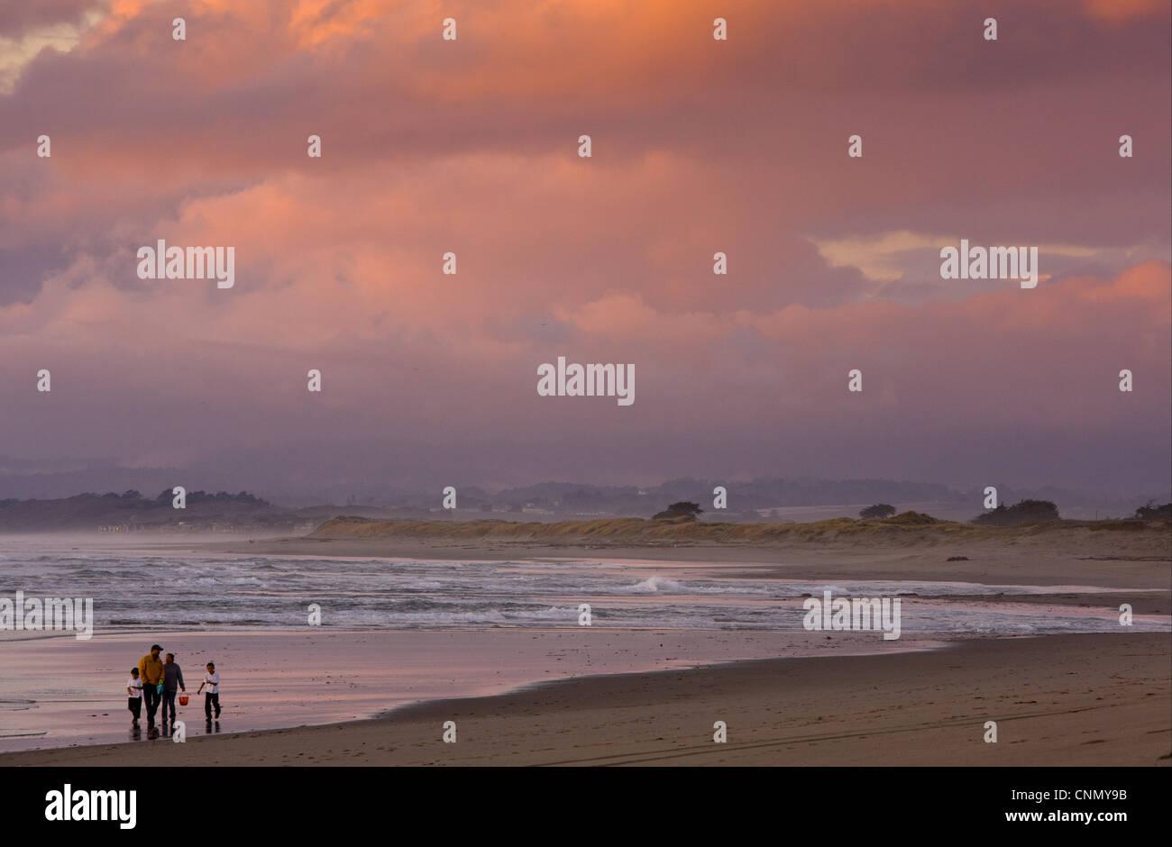 Family beach-combing on beach in evening light, Pacific Ocean, Moss Landing, Central California, U.S.A., november Stock Photo