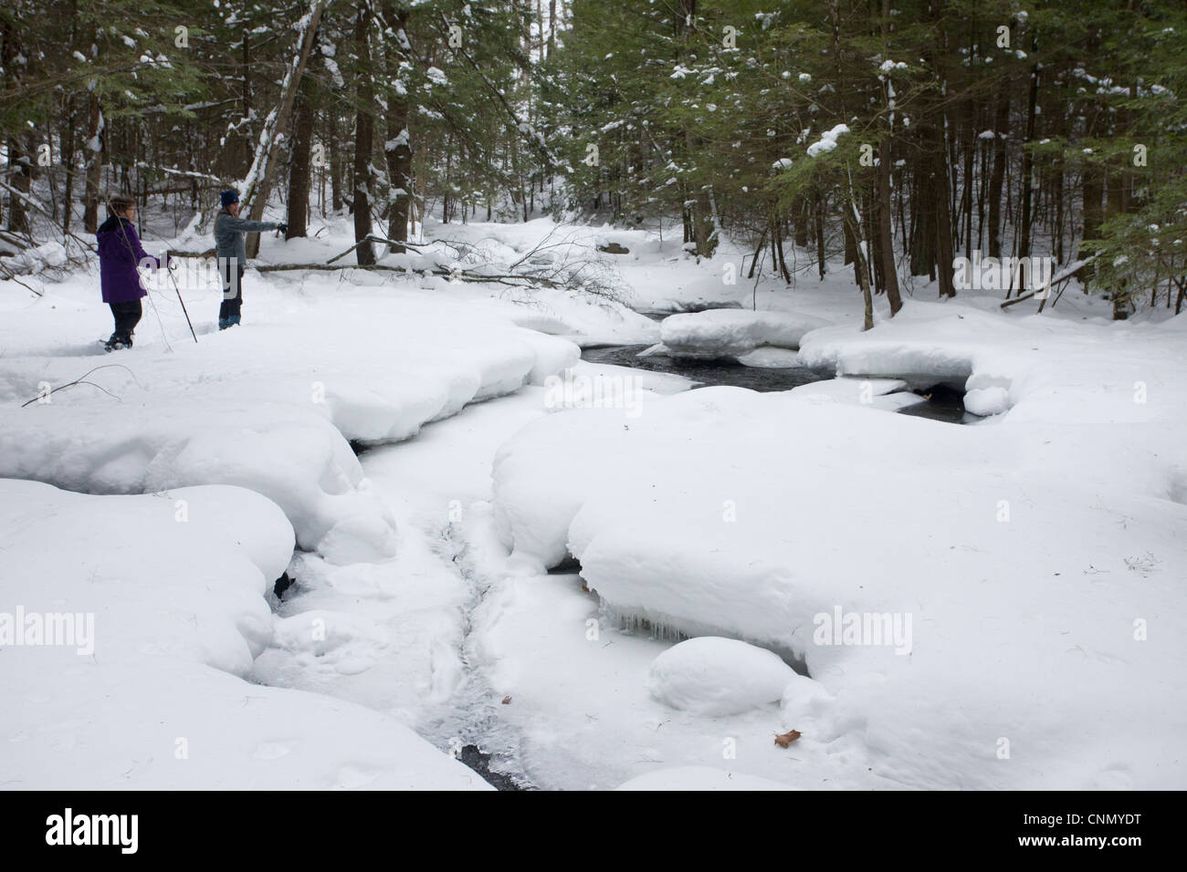 Stream woodland after heavy snow Robert Ingalls Preserve Rensselaer Land Trust Horsehaven Road Rensselaer County - Stock Image