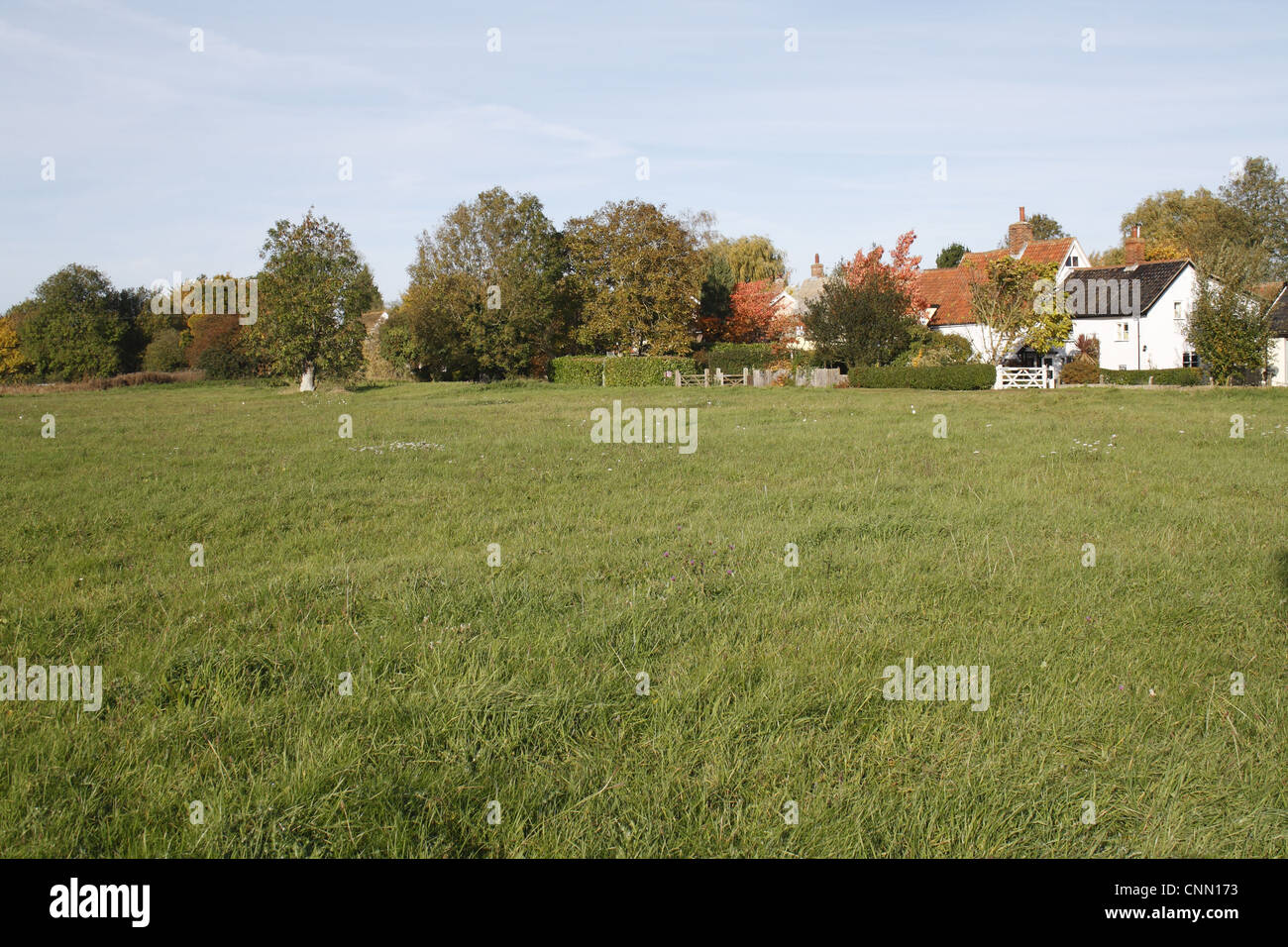 View of commonland reserve, Mellis Common, Mellis, Suffolk, England, october Stock Photo