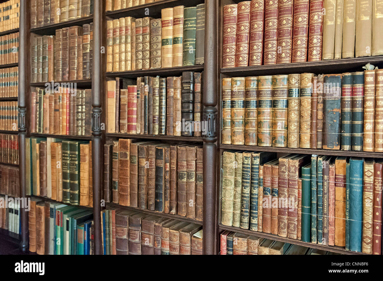 close up of a book case with old books - Stock Image