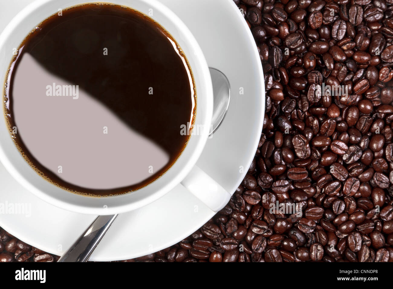Overhead photo of a cup of coffee sitting on fresh roasted arabica and robusta coffee beans. - Stock Image