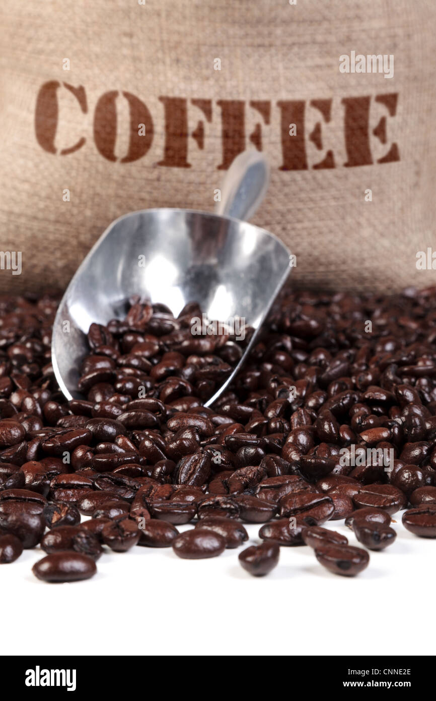 Photo of fresh roasted coffee beans with a scoop and hessian sack. - Stock Image