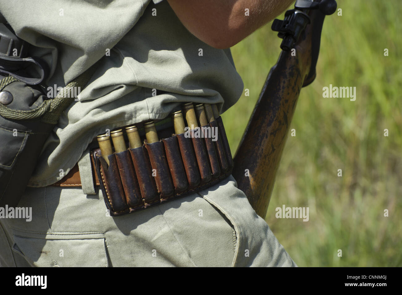 Armed game warden, close-up of cartridge belt, Kruger N.P., Mpumalanga, South Africa - Stock Image