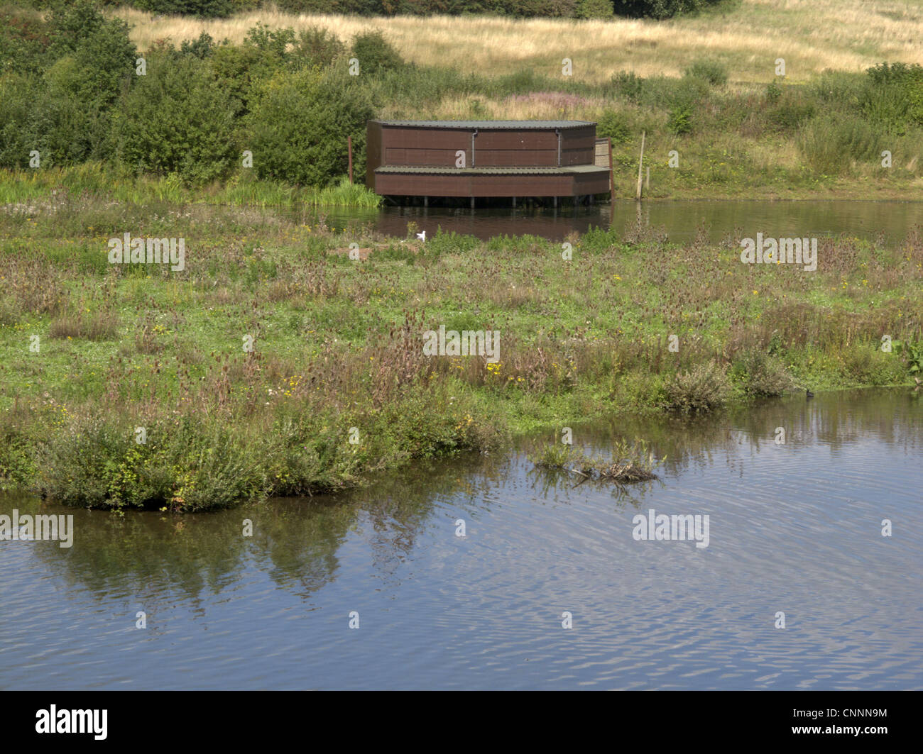 View of freshwater lake habitat and hide, Sandwell Valley RSPB Reserve, West Midlands, England, september - Stock Image