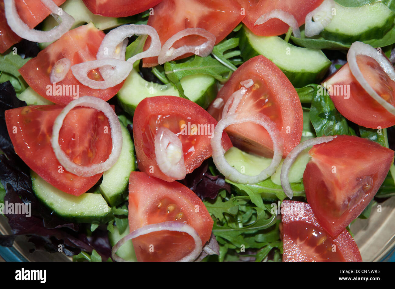 home made fresh green salad tomato lettuce onion cucumber on a serving plate - Stock Image