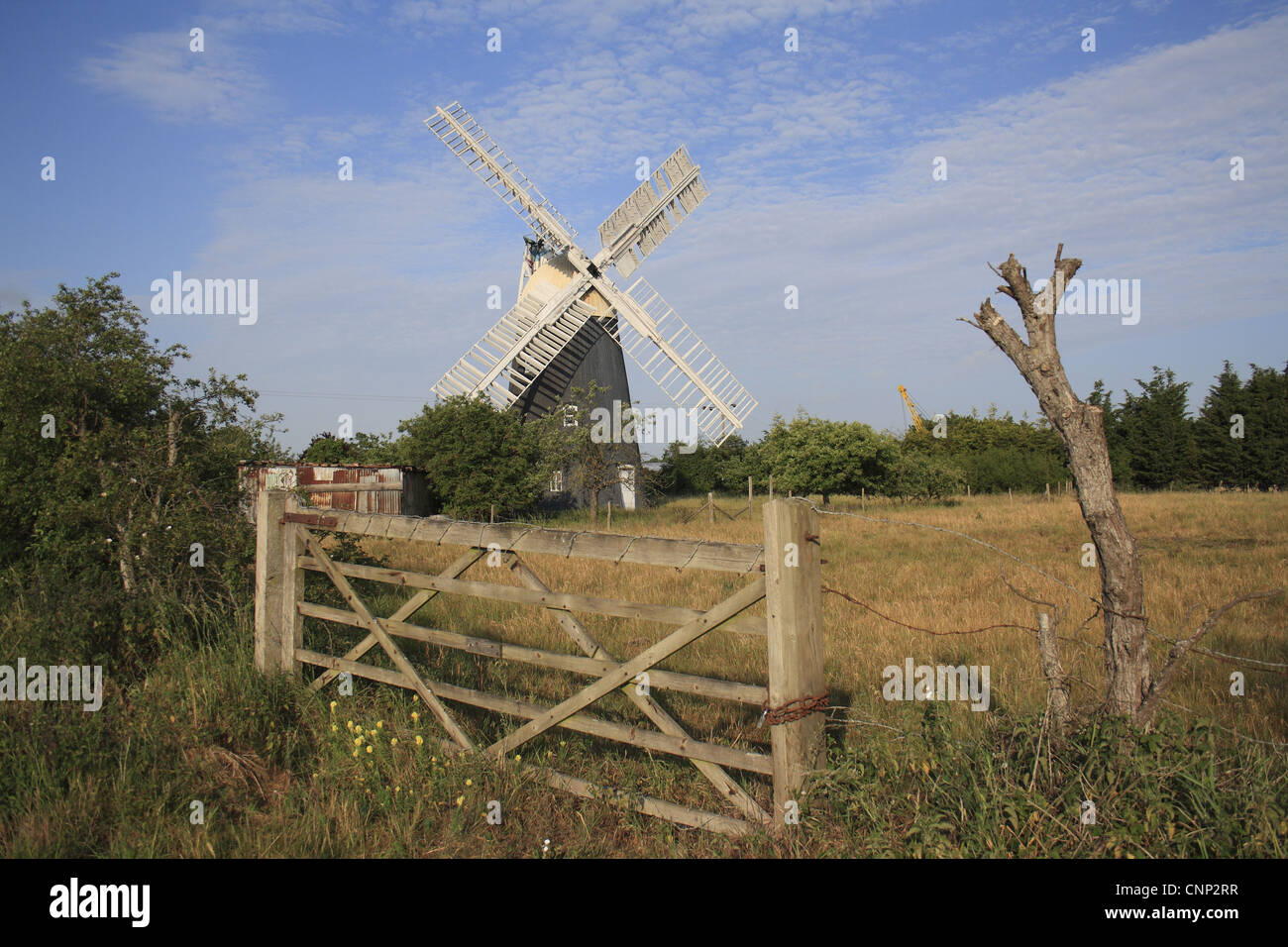 Nineteenth Century tower mill, Thelnetham Windmill, Thelnetham, Little Ouse Valley, Suffolk, England, june - Stock Image