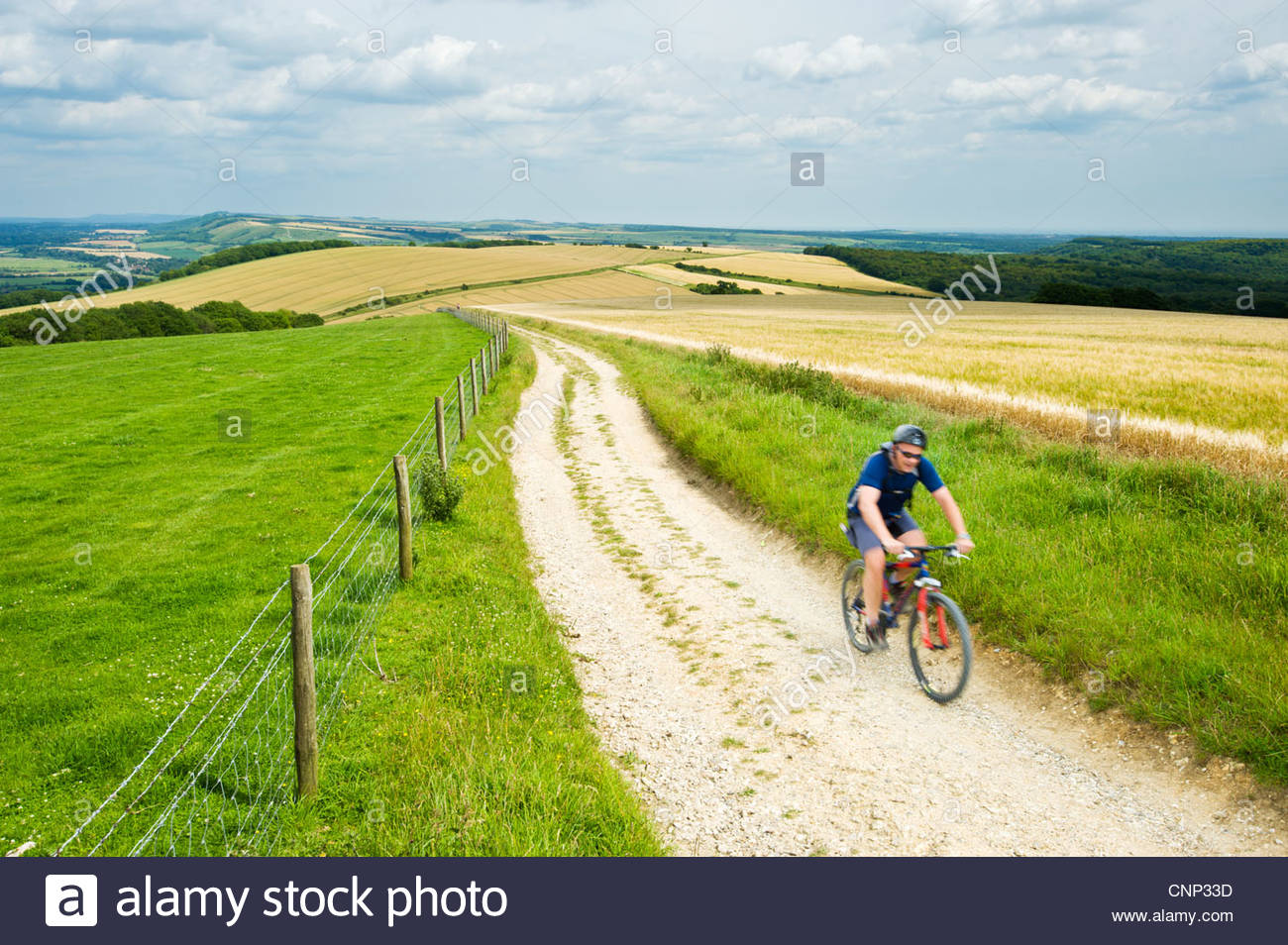 Cyclist on the South Downs Way near Bignor Hill, West Sussex, England. - Stock Image
