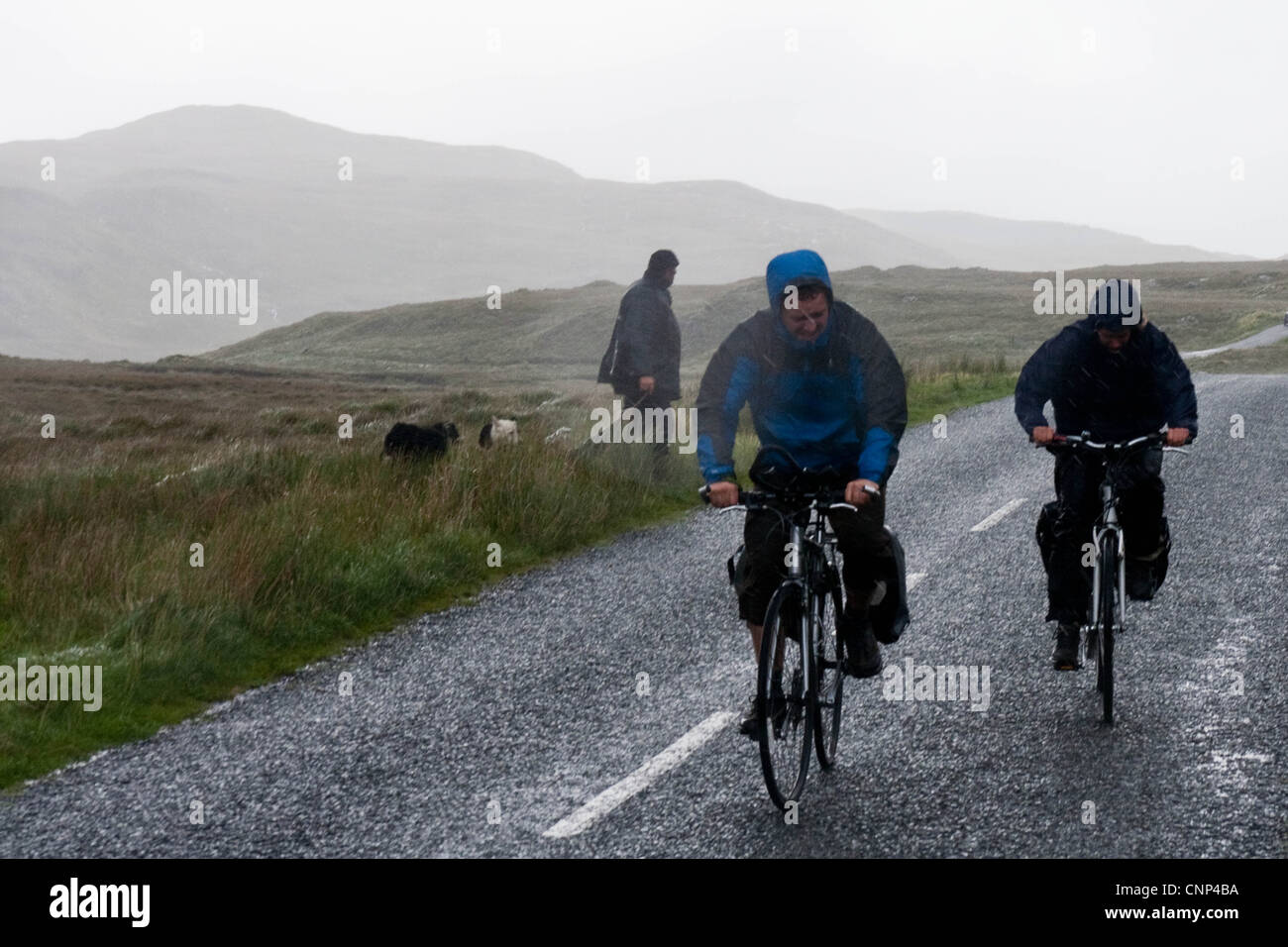 A couple of cyclists battle against the rain in the west of Ireland - Stock Image