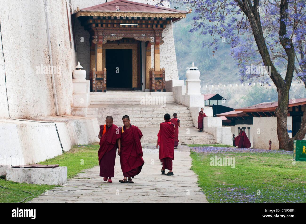 Asia, Bhutan. Monks walking outside Punakha Dzong palace - Stock Image