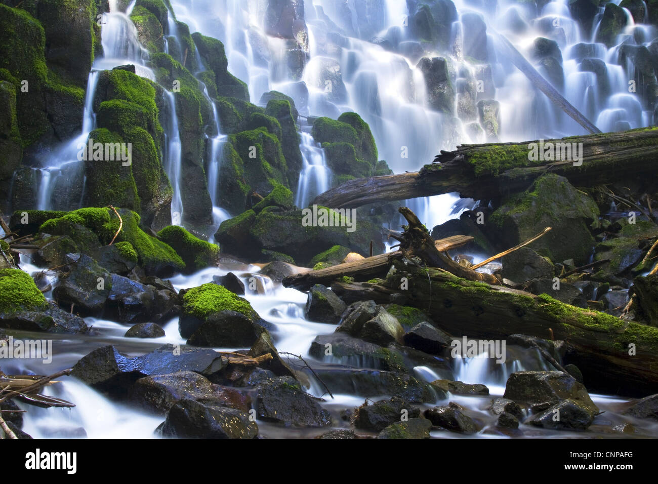Ramona Falls located in Oregon's Mt Hood National Forest - Stock Image