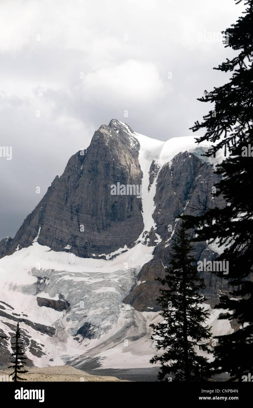 Tumbling Glacier on the Rockwall Trail, Kootenay National Park of Canada, British Columbia, Canada - Stock Image