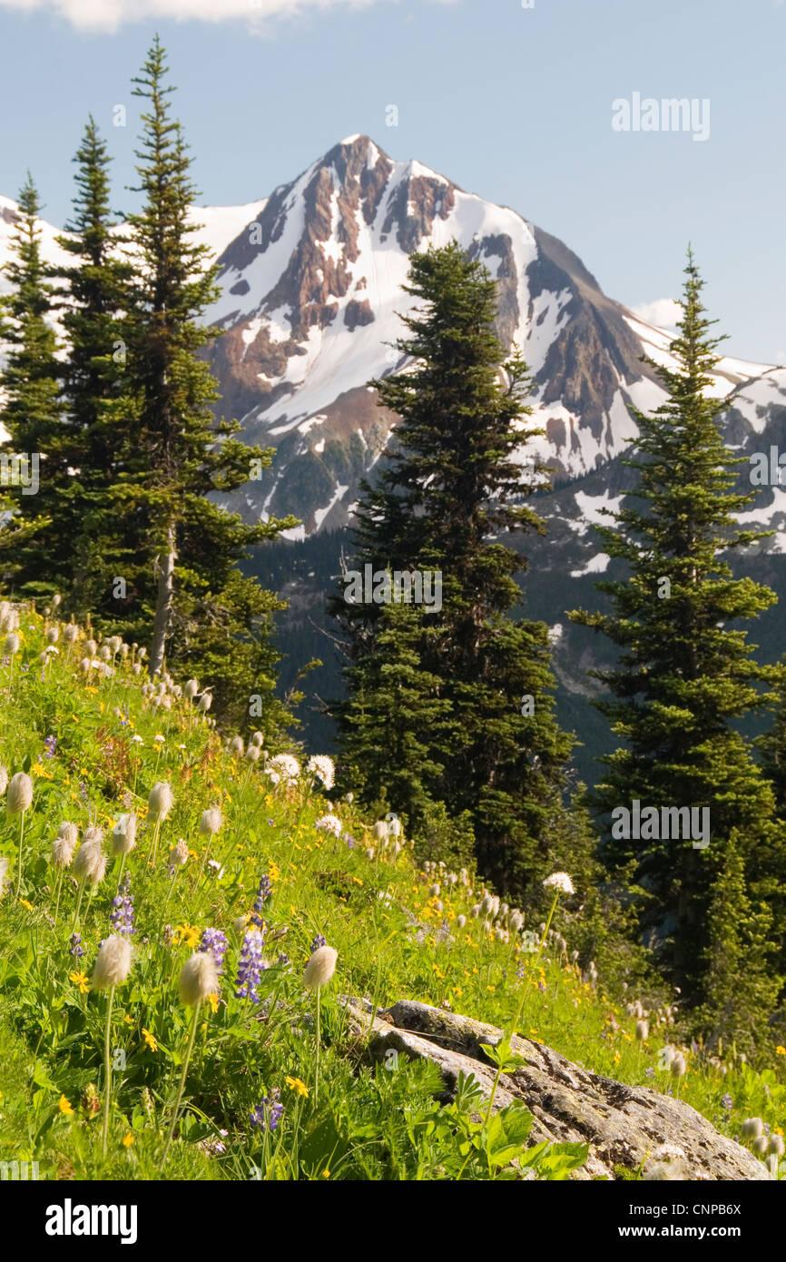 Fissile Mountain from Blackcomb Mountain, Whistler, BC, Canada. Stock Photo