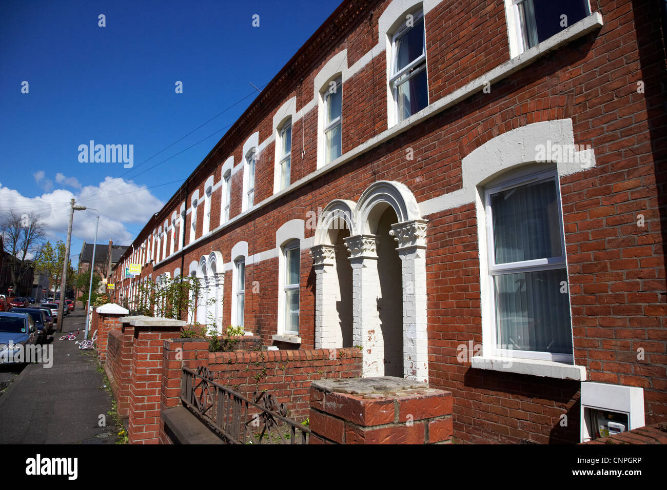 row of terraced houses in a student residential area of Belfast Northern Ireland UK - Stock Image